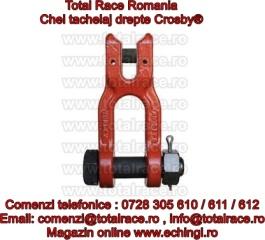 Gambeti / shackles pentru uz industrial Crosby® echingi.ro
